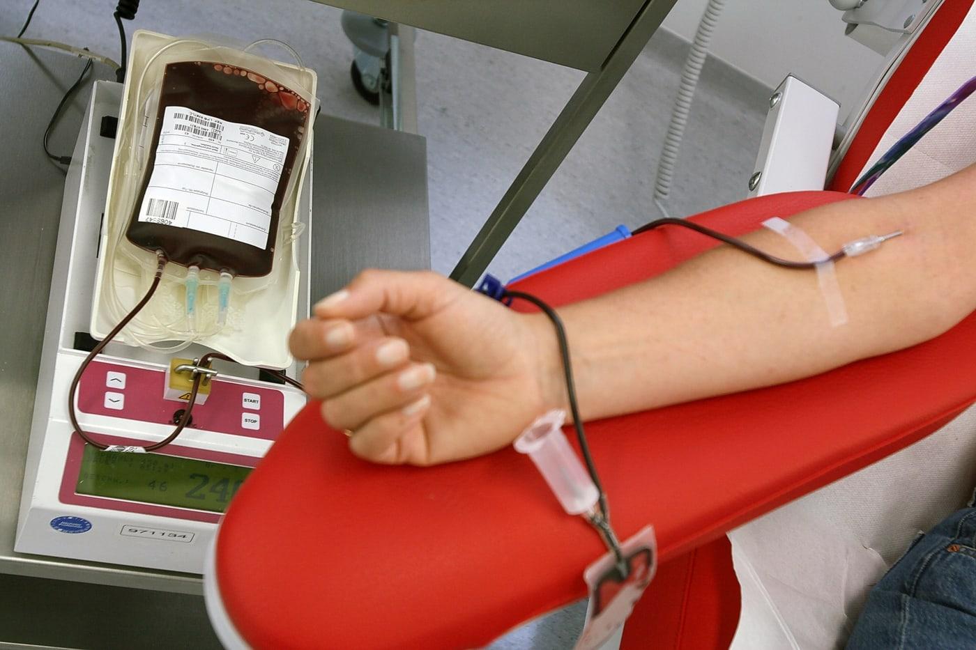 Visite Centro Raccolta Sangue Avis Bologna