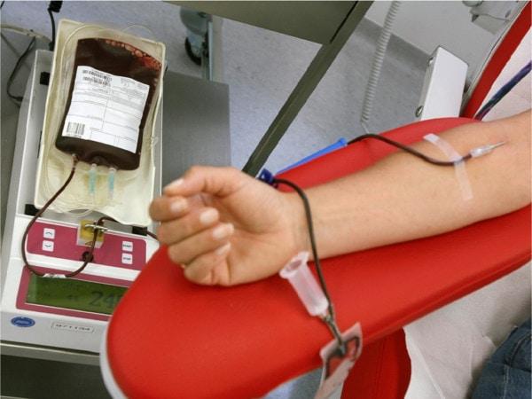 Immagini in evidenza visite centro raccolta sangue Bologna