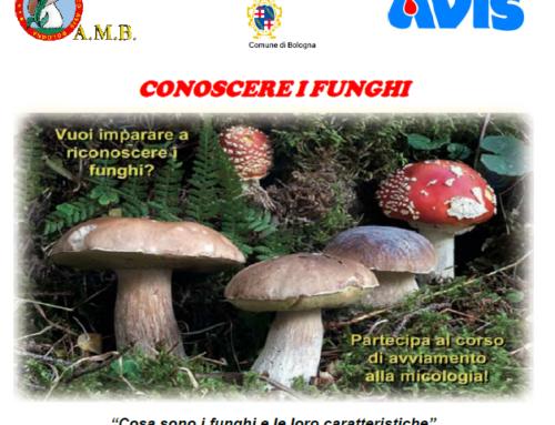 """Corso """"Conoscere i funghi"""""""