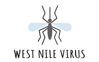 WEST-NILE-VIRUS AVIS BOLOGNA