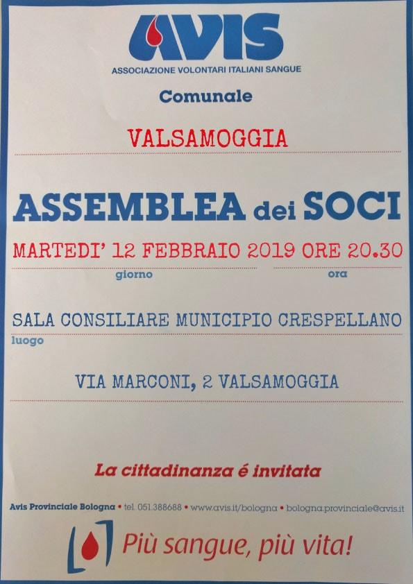 ASSEMBLEA-VALSAMOGGIA 2019
