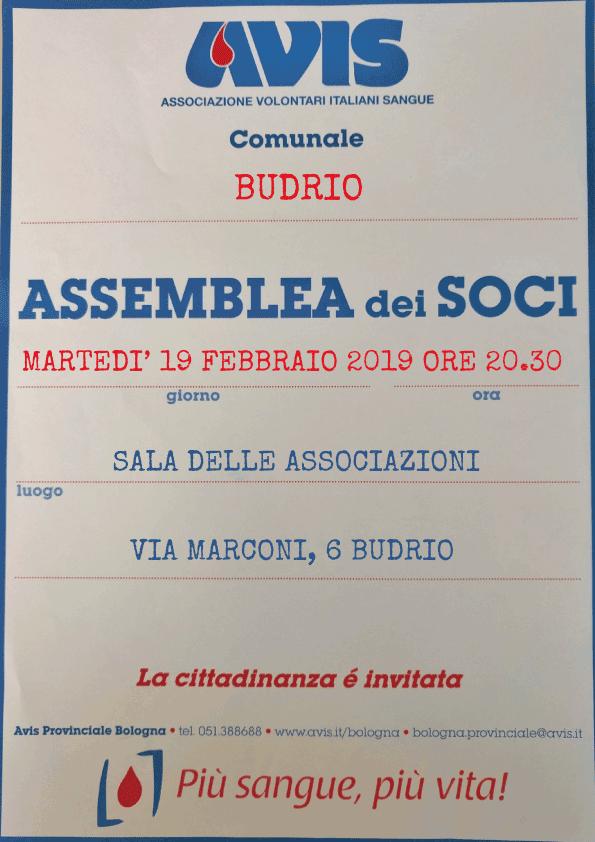 Assemblea 2019 Budrio @ Sala delle Associazioni