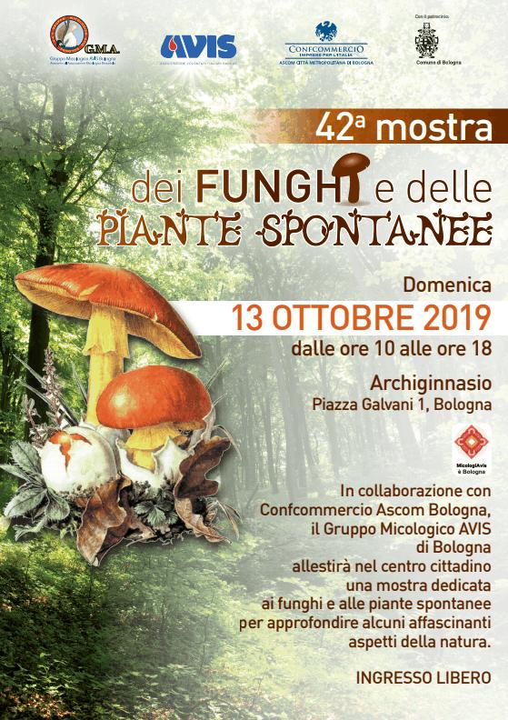 Mostra dei funghi e delle piante spontanee @ Biblioteca dell'Archiginnasio | Bologna | Emilia-Romagna | Italia